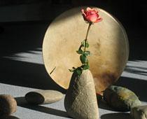 schamanische rituale trommel rose